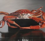 forth-blue-swimmer-crab-after-150x136